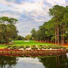 Innisbrook  Resort & Golf